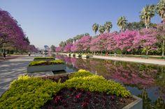 Parque no centro da cidade de Porto Alegre - RS - Brasil.