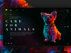 Care for animals by