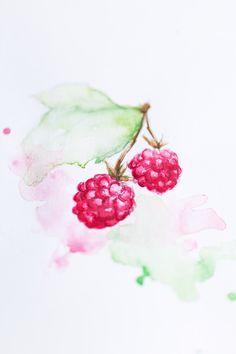 Raspberry #illustration