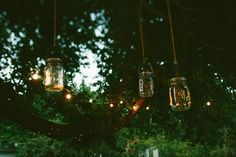 Matt and Laura's Wedding Outdoor Fairy Lights, Flower Decorations, Christmas Ornaments, Holiday Decor, Pretty, Outdoor Weddings, Flowers, Photography, Vintage