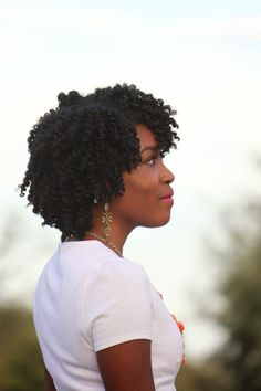 Fashion To Live: twist out on natural hair (Twist Outs On Natural Hair)