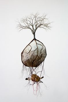 Jorge Mayet's tree sculptures produced from paper, wire, fabric, and acrylic showcase the ways in which a tree's roots often mimic the branches that sprout above ground. In these suspended works the underground systems are far more expansive than what appears above the earth, showing t