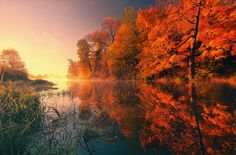 Hd Widescreen Wallpapers, Latest Wallpapers, High Quality Wallpapers, Backrounds, Autumn Trees, Nature Wallpaper, Reflection, Country Roads, Sunset
