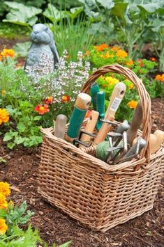 Tiny Garden Ideas Perfect for Small Spaces