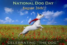 National Dog Day - August 26