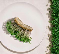 Pinoa Foods - Urbaani kestävää viljelyä  Helsingissä. Vertical Farming, Sustainable Food, Asparagus, Foods, Vegetables, Food Food, Studs, Food Items, Vegetable Recipes
