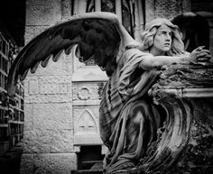 Life is art. Art is life. Cemetery Angels, Cemetery Statues, Cemetery Art, Angel Statues, Statue Ange, Goth Art, Angels And Demons, Angel Art, Sculpture Art