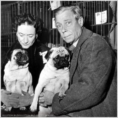 20.6 тис. вподобань, 357 коментарів – The Crown (@thecrownnetflix) в Instagram: «The Duke Of Windsor, Wallis Simpson and their pugs. Swipe to see their representation in #TheCrown.»