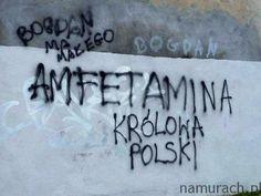 Królowa amfetamina - graffiti Wrocław #amfetamina #graffiti #Wrocław