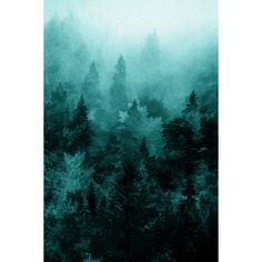 Fractal Forest Art Print ❤ liked on Polyvore featuring home, home decor, wall art and forest home decor