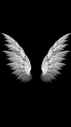 to drawing wings Wings Wallpaper, Dark Wallpaper Iphone, Angel Wallpaper, Mood Wallpaper, Galaxy Wallpaper, Black Wallpaper, Background Images For Editing, Black Background Images, Photo Background Images