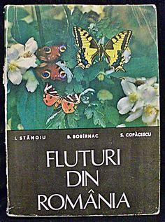Fluturi Din Romania Lei, Painting, Biology, Painting Art, Paintings, Painted Canvas, Drawings