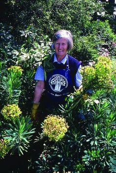 Penelope Hobhouse (born 20 November 1929) is a garden writer, designer, lecturer and television presenter.