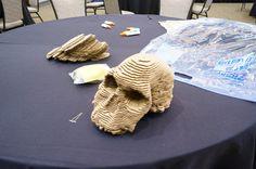 TED 2012 - Skull | Flickr - Photo Sharing!
