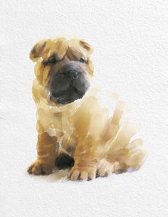 Watercolor SharPei Dog Painting Art Print 10 by NovosadWatercolors, $20.00