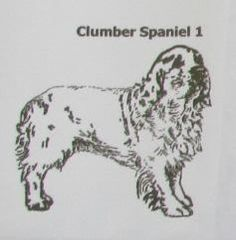 Custom Clumber Spaniel Dog Natural Stone Coasters Trivits