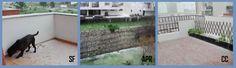 O Palhetas na Foz: Chuva, vento e varandas com granizo…