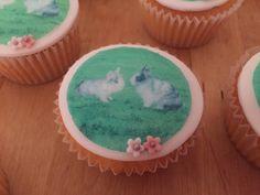 Konijnen cupcakes