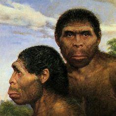 Two views of Homo erectus by Czech artist Zdeněk Burian (1905-1981)