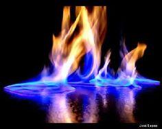 Amor é fogo que arde sem se ver;  É ferida que dói e não se sente;  É um contentamento descontente;  É dor que desatina sem doer;    É um não querer mais que bem querer;  É solitário andar por entre a gente;  É nunca contentar-se de contente;  É cuidar que se ganha em se perder;    É querer estar preso por vontade;  É servir a quem vence, o vencedor;  É ter com quem nos mata lealdade.    Mas como causar pode seu favor  Nos corações humanos amizade,  se tão contrário a si é o mesmo Amor? - RR