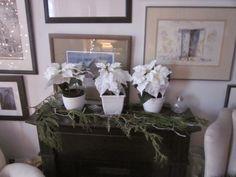 Christmas Decorations, Holiday, Plants, Home, Design, Vacations, Christmas Decor, Holidays, Ad Home