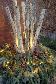 Holiday urn with birch branches bought birch branches today at Ridgeway nursery starting these on the weekend   :)