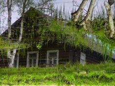 Поэтическая лужа #дом #лужа #май #отражение
