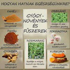 Smoothie Fruit, Yoga Teacher Training, Doterra, Fitness Tips, Health Tips, Ethnic Recipes, Food, Medical, Gardening