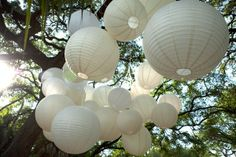 bunches and bunches of paper lanterns
