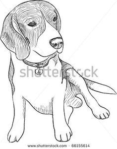 how to draw a cartoon beagle