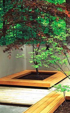 Contemporary Design and Japanese Style Design. Landscape Architectural Design. Deck Design. Modern Design. Minimalist Landscape Design. Zen. Asian Style.