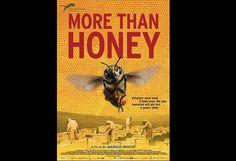 More than Honey - Markus Imhoof (Official Trailer) on Vimeo