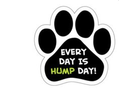 Paw shape car magnet. Everyday is hump day