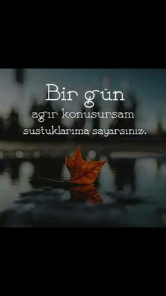 sustuğum bi gün yokki Cool Words, Wise Words, Book Quotes, Me Quotes, Great Quotes, Inspirational Quotes, Dont Love, Deep Words, Thing 1