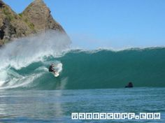 Piha - Surfing in West Coast Auckland, New Zealand Auckland, Big Wave Surfing, New Zealand Houses, Windsurfing, Tree Tops, Big Waves, Surfs Up, West Coast, Surfboard