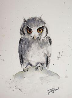 Buy Teenage Owl, Watercolor by Tomasz Mikutel