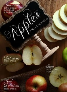 Fall Apple Creations  and the complete guide to apples. Lots of recipes and ideas!