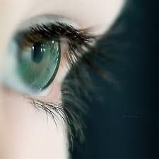 discovery eyes - Google Search