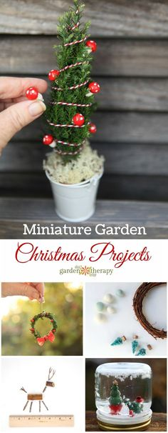 Christmas Miniature Garden Project and Ideas. From teeny tiny evergreen wreaths to lit up decorated miniature Christmas trees, here are some of the projects that will whisk you away to a happy little place.