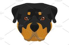 Rottweiler dog Vector Illustration Graphics Rottweiler dog isolated on white background vector illustration in cartoon style.**This illustrati by asantosg