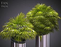 PLANT 53 3D Model .c4d .max .obj .3ds .fbx .lwo .lw .lws by Sabhatkhan