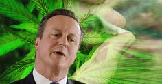 Legalising cannabis could cut the deficit by £600million, a bombshell secret report has found. Here's exactly what the study said