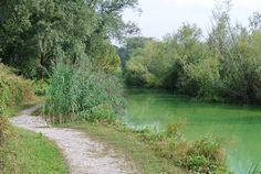 Escursioni in Lombardia, scoprendo la Brianza. Passeggiata al lago di Sartirana, immersi nella riserva naturale protetta, tra canneto e birdwatching.