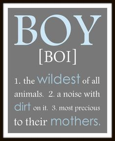 BOY definition - a noise with dirt on it print - personalized colors - Boy wall art print.  Boy nursery, little boy print. playroom art on Etsy, $11.99
