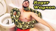 Most Amazing Wild Animal Attacks #69 ❖ Biggest Giant Anaconda in Toilet ...