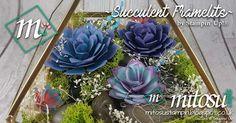 30th Birthday Present ~ Succulent Terrarium