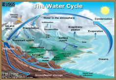 The water cycle contains four phases: evaporation, condensation, precipitation, and collection. It uses the Earth's water in all of its forms: liquid, vapor and solid. So what is the water cycle and how does it work? Water Cycle Diagram, Apologia Physical Science, Water Storage, Home Schooling, Science Experiments, Science Activities, Science Ideas, Science Chart, Science Websites