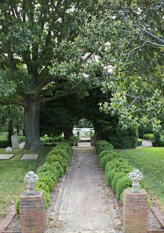 Box edged brick path through old cemetery with brick piers, old hardwood trees. Photo Credit: Patricia Lyons.