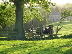 Hazy days of Spring by Lancashire