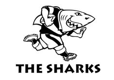One of the most known South African rugby union teams, the Sharks have a fun and memorable logo, which has stayed with the team since it was officially founded. Dream Guide, South African Rugby, Rugby Union Teams, Rugby News, Durban South Africa, Rugby Sport, Shark Logo, Super Rugby, Yule